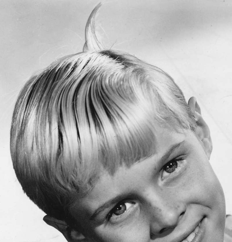 Dennis_the_Menace_Jay_North_1960 B