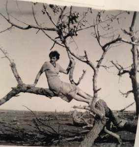 Becky in tree