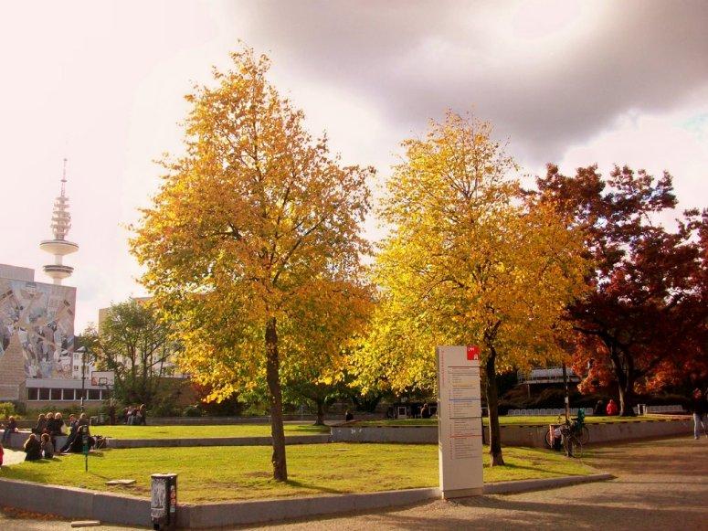 Hamburg University School of Meteorology